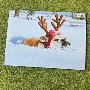 English Bulldog Christmas Cards Set of 2 with envelopes UGA Holiday Dog New Pet